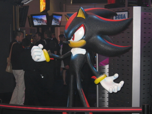 Shadow the Hedgehog, the dark rival